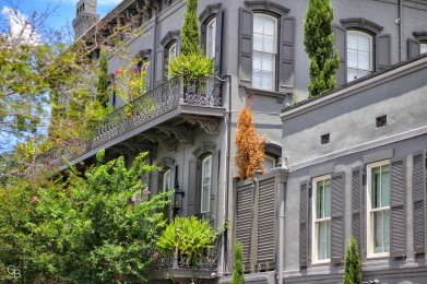 Savannah_architecture 1